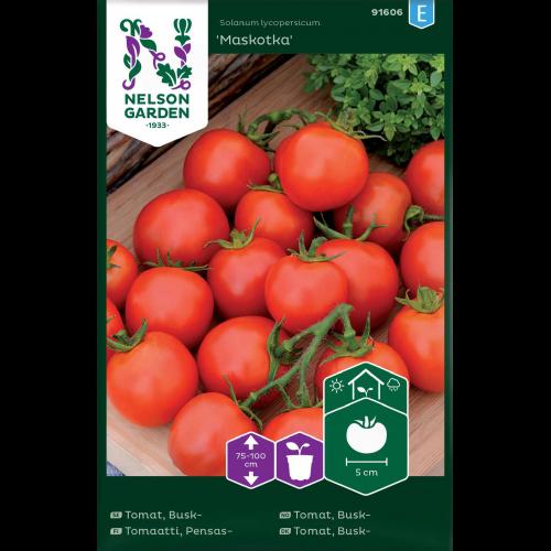 Maskotka tomatfrö