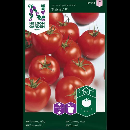 shirley tomatfrö