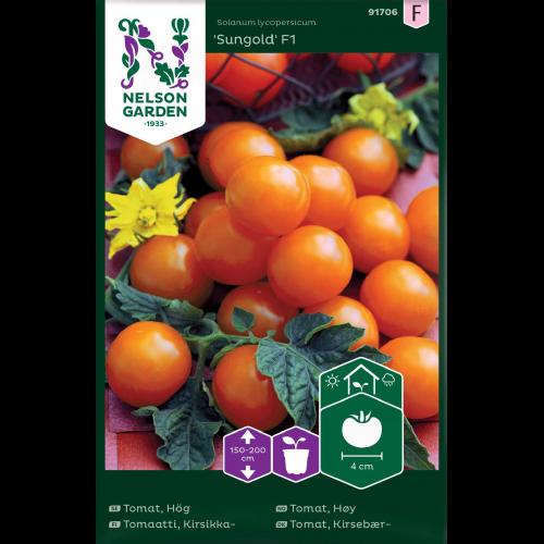 sungold tomatfrö